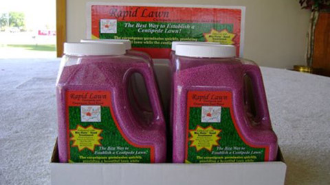 Rapid Lawn Seed Blend