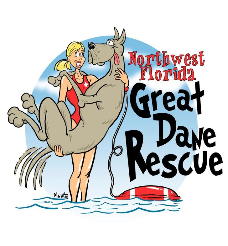 NW Florida Great Dane Rescue (1)